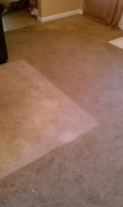 Stand Carpet - Before and After