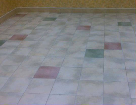 Tile & Grout Cleaning Before