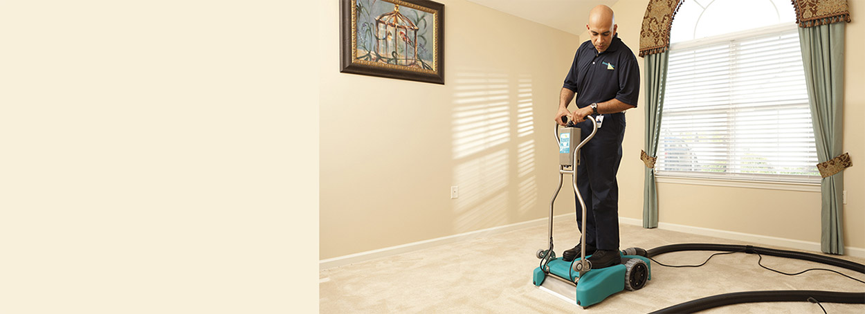 carpet cleaning servicemaster by lovejoy