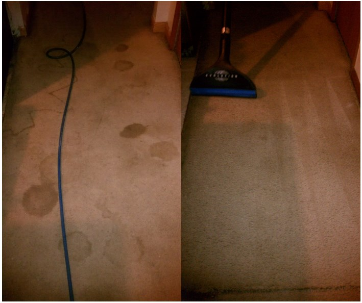 ServiceMaster Clean Carpet-Cleaning